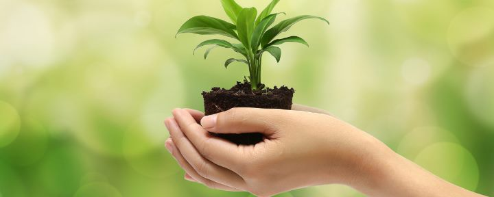 Compañías ecuatorianas promueven estrategias de sostenibilidad